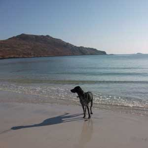 Eriskay Beach (c) The booktrail