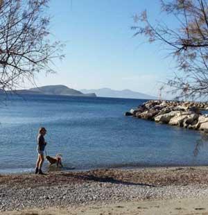 Jenn on the beach (c) Jennifer Barclay