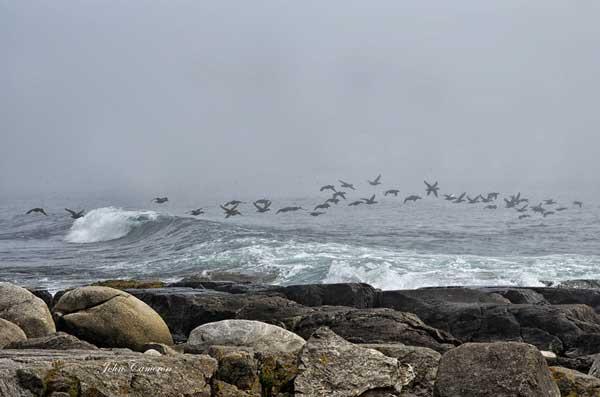 Cape Breton (c) John Cameron