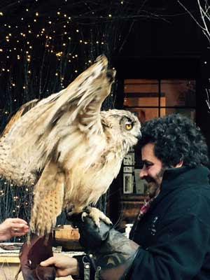 Harry Potter owl and Hagrid