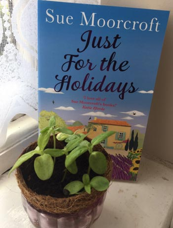Just for the Holidays (c) TheBookTrail