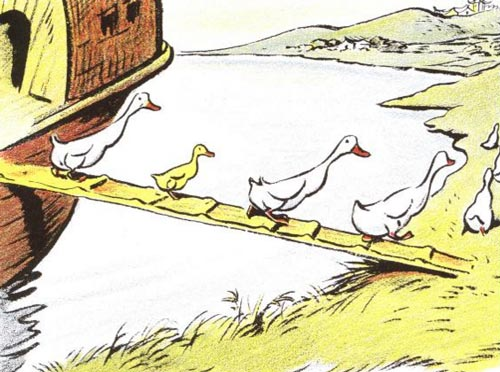 The family of ducks in an illustration from the books