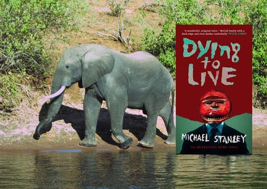 Elephant-on-the-Chobe-river (c) Michael Stanley
