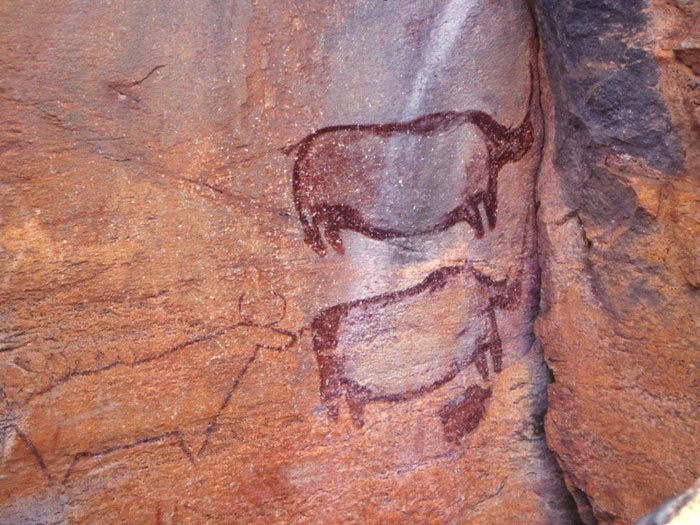 Rhino-family-at-Tsodilo-(c) Stan-Trollip