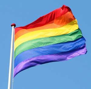 The LGTB flag