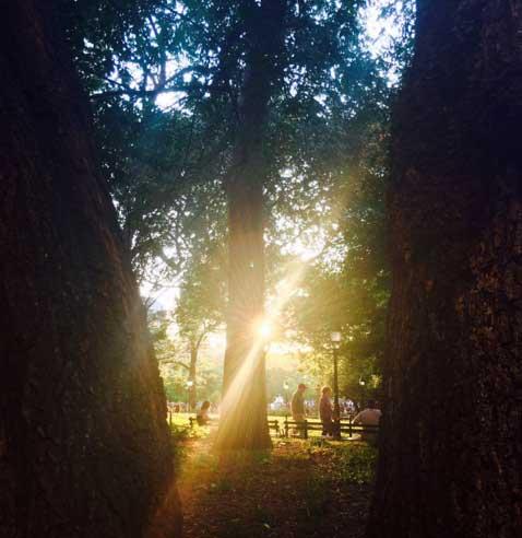 Washington Square Park (c) Suzanne Riddell