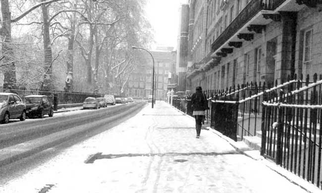 Gordon Square in the snow, London (c) Carol Lovekin