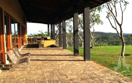 Cinnamon plantation (c) Mirissa Hills