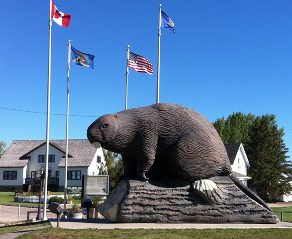 Beaver welcomes you to Beaverlodge (C) Elinor Florence