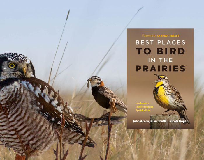 est Places to Bird on the Prairies