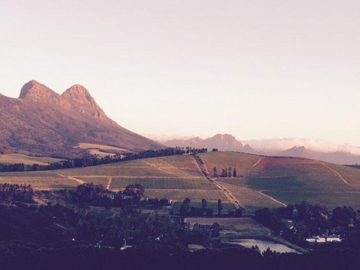 Stellenbosch (c) Peter Stafford-Bow