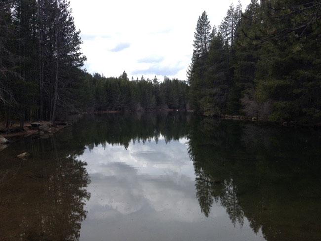 Donner Lake (c) Alma Katsu