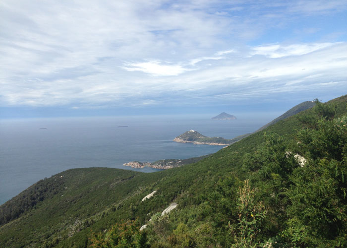 View to Wilsons Promontory Lighthouse on South East Point (c) Sally Piper