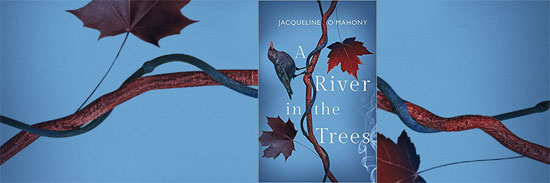 A River in the Trees book