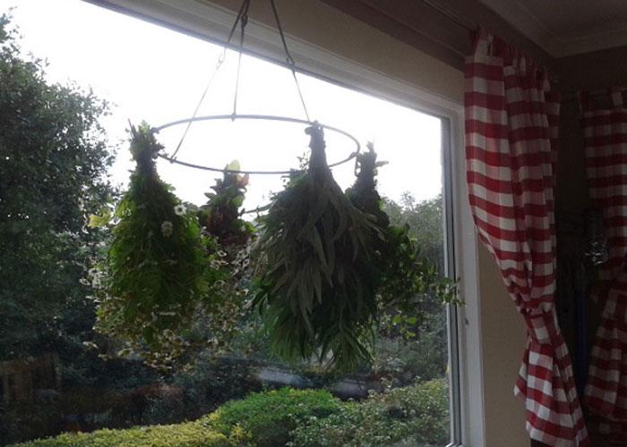 Drying herbs (c) Helen Steadman