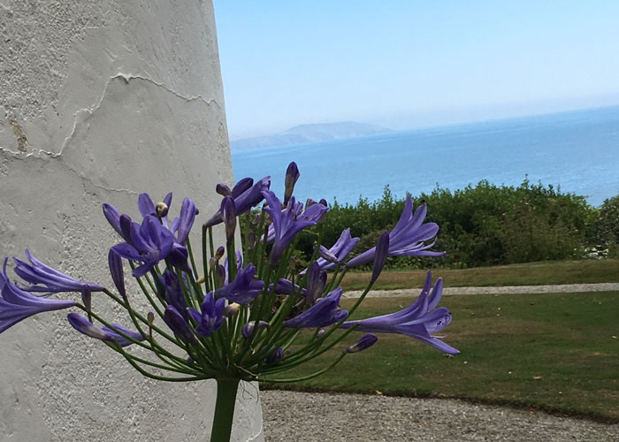 Travel to The Path to the Sea, Cornwall with Liz Fenwick