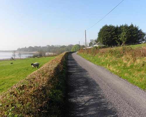 A Place to Belong in rural Ireland - Cathy Mansell