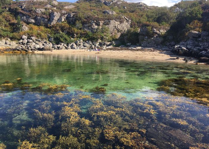 The Coral Beach (c) Kiley Dunbar