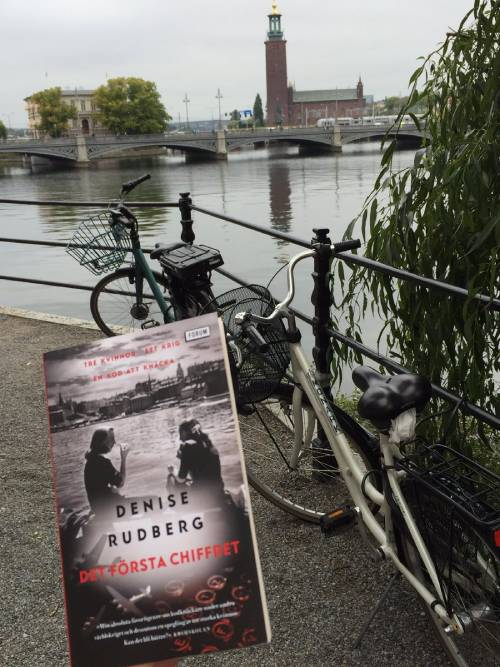 Swedish historical fiction